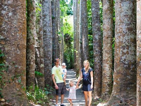 Vợ chồng trẻ bán hết tài sản để đưa 2 con đi du lịch