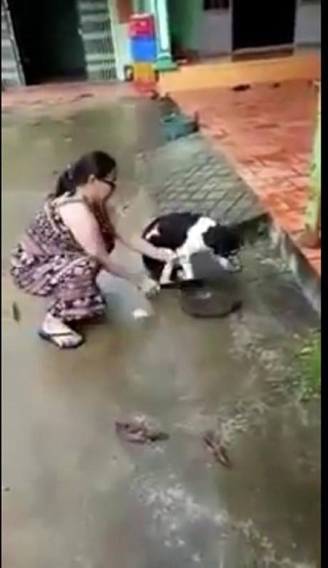 Bị lên án vì hành động chặt chân chó, người chủ lên tiếng: Tôi chặt chân để bảo vệ nó-1