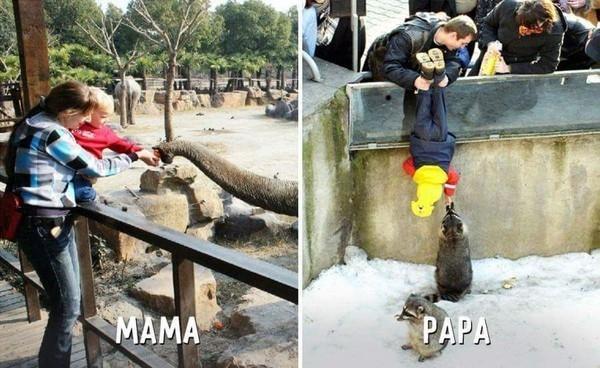 Ảnh hài: Sự khác biệt không tưởng giữa bố và mẹ khi trông con-2