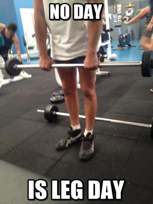 Chết cười với những thánh tập gym nhưng không thèm tập chân-2