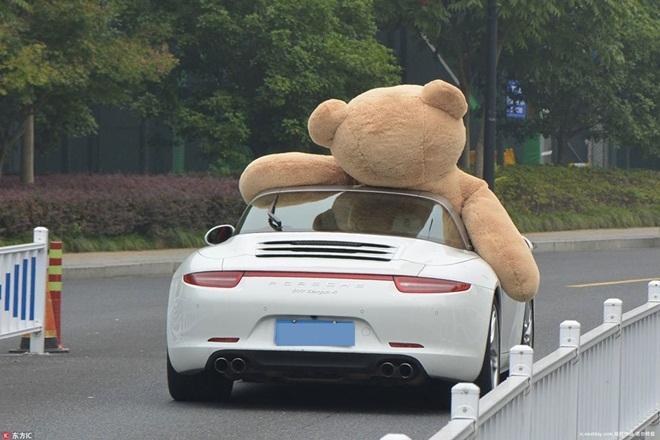 Mang xe 8 tỷ và gấu khổng lồ tỏ tình, chàng trai vẫn bị từ chối phũ-4