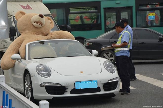 Mang xe 8 tỷ và gấu khổng lồ tỏ tình, chàng trai vẫn bị từ chối phũ-1