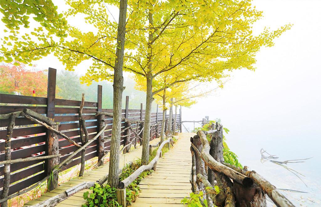 Mùa thu tại hòn đảo trong phim Bản tình ca mùa đông-5