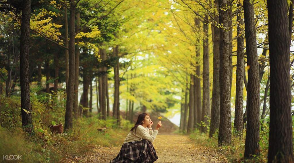Mùa thu tại hòn đảo trong phim Bản tình ca mùa đông-7