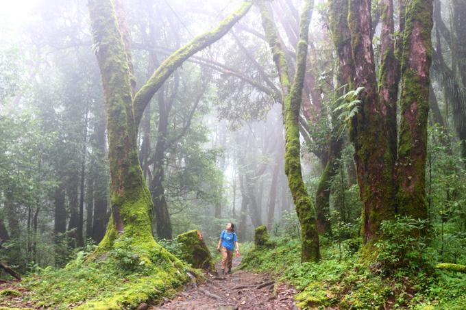 Hành trình trekking đường núi ở đất nước Nepal huyền bí-3