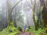 Hành trình trekking đường núi ở đất nước Nepal huyền bí