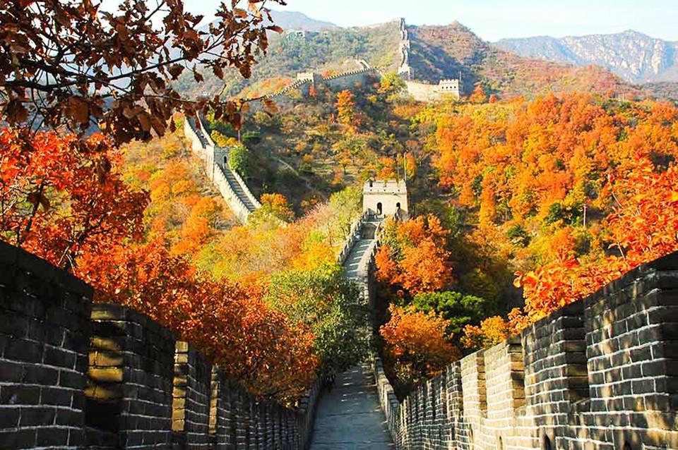 Những đường cây mùa thu đẹp nhất thế giới-7