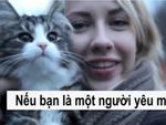 Chùm ảnh về chú mèo hai mặt đáng yêu nhất thế giới-11