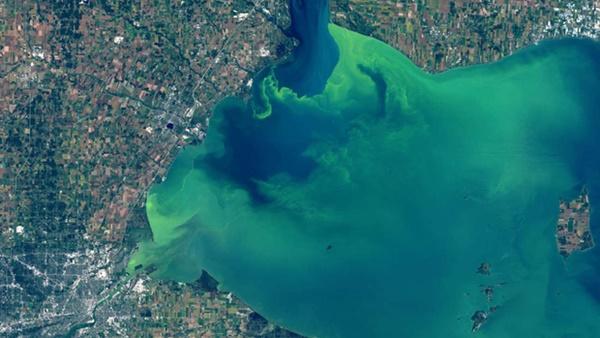 Hồ nước biến thành màu xanh tuyệt đẹp sau hơn nửa thế kỷ, nhưng đó lại là tin cực kỳ không tốt-1