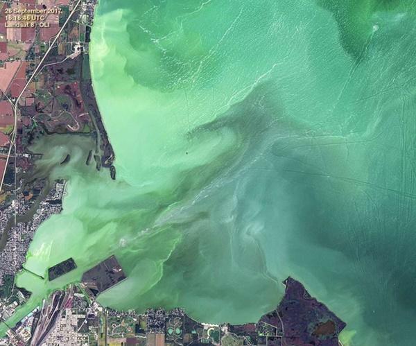 Hồ nước biến thành màu xanh tuyệt đẹp sau hơn nửa thế kỷ, nhưng đó lại là tin cực kỳ không tốt-2