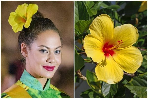 Mặc áo dài và cài dâm bụt giống Hoàng Thùy, người đẹp Fiji sáng nhất Miss Grand 2017-2