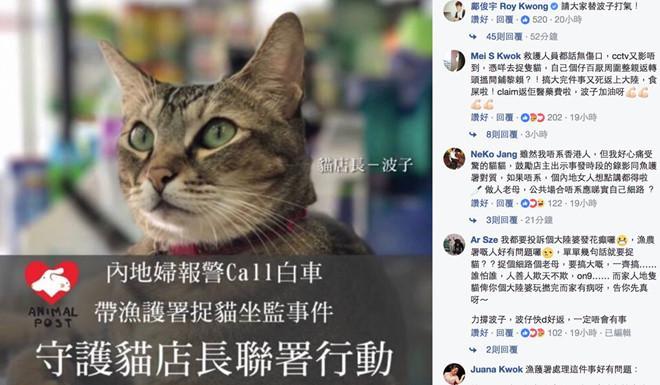 Gần 70.000 người xin cứu con mèo chủ tiệm thuốc ở Hong Kong-2
