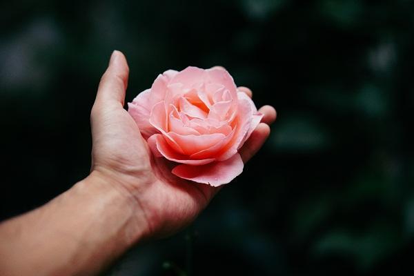 Yêu thôi chưa đủ, nhất định phải biết 8 quy tắc này để giúp tình yêu bền vững-1