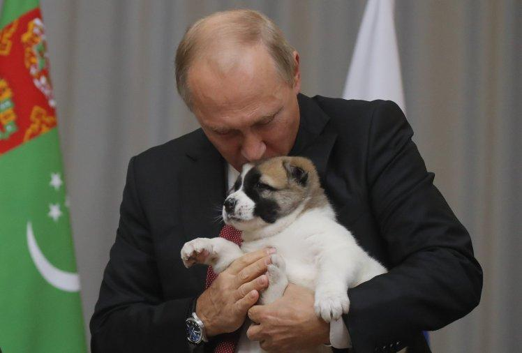 Món quà sinh nhật muộn khiến Tổng thống Nga Putin thích thú-1