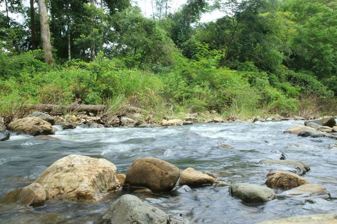Trekking Tà Năng - Phan Dũng: Đi sao cho an toàn?-1