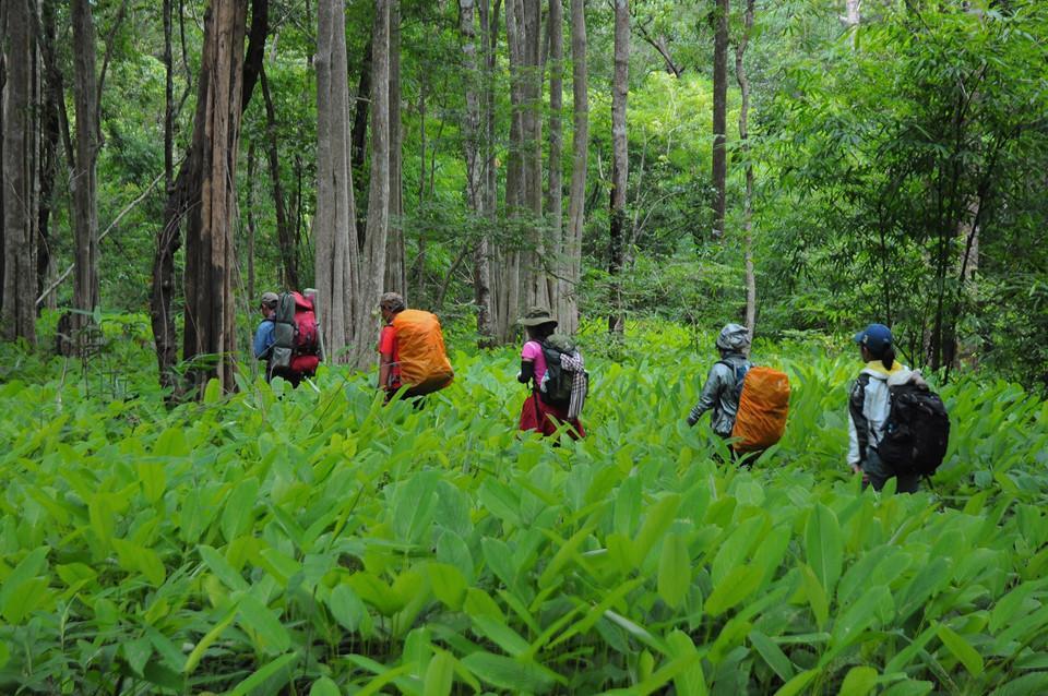 Trekking Tà Năng - Phan Dũng: Đi sao cho an toàn?-3