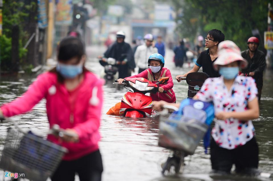 Người Sài Gòn ra đường bắt cá sau trận mưa lớn suốt đêm-1