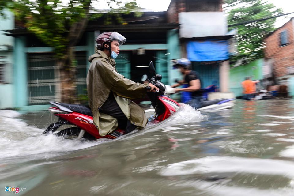 Người Sài Gòn ra đường bắt cá sau trận mưa lớn suốt đêm-2