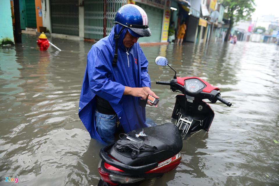 Người Sài Gòn ra đường bắt cá sau trận mưa lớn suốt đêm-3