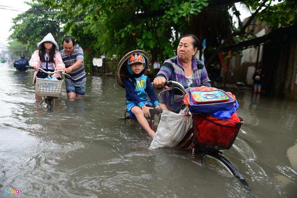Người Sài Gòn ra đường bắt cá sau trận mưa lớn suốt đêm-4