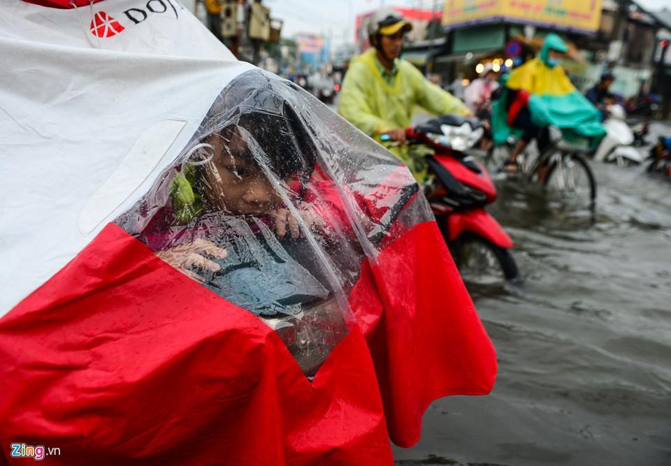 Người Sài Gòn ra đường bắt cá sau trận mưa lớn suốt đêm-8