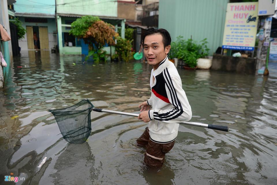 Người Sài Gòn ra đường bắt cá sau trận mưa lớn suốt đêm-11