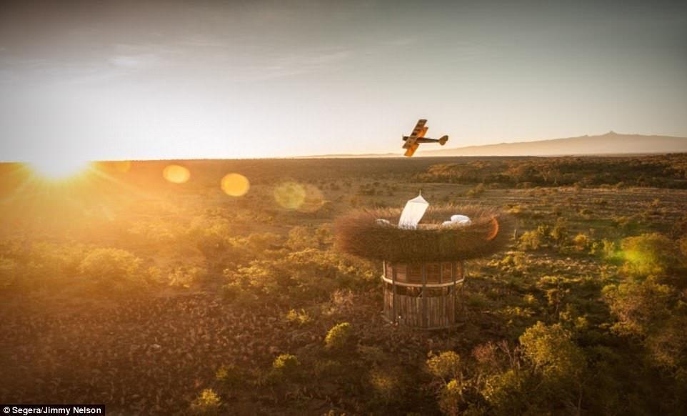 Phòng khách sạn tổ chim 5 sao đầu tiên trên thế giới-3