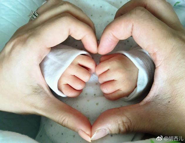 Á hậu TVB Hồ Hạnh Nhi hạ sinh quý tử đầu lòng-1