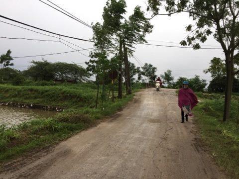 Hà Nội: Nỗi đau của người vợ có chồng bị bắt do đánh tử vong trộm chó-1