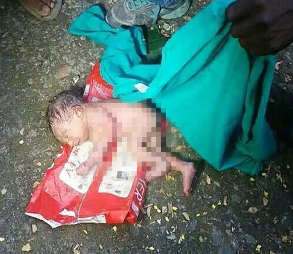Bé gái bị vứt trong thùng rác, kiến bu khắp người chỉ vì sinh ra không phải con trai-1