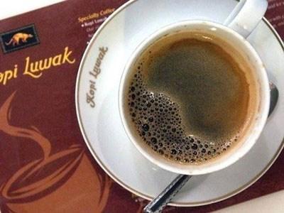 Sự thật tàn khốc đến rùng mình đằng sau loại cà phê ngon nhất thế giới-1