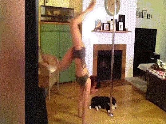 Clip hài: Mặt trái của nghề múa cột