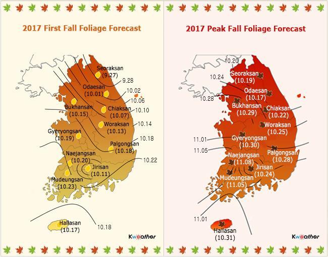 Lịch lá vàng lá đỏ mùa thu ở Hàn Quốc và Nhật Bản-2