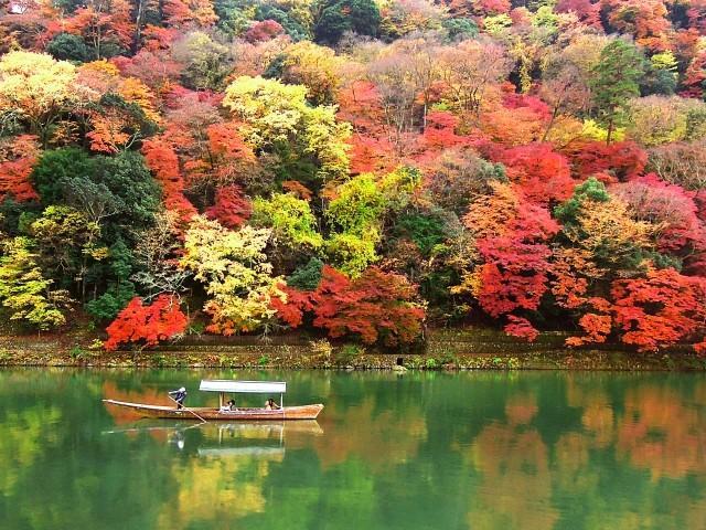 Lịch lá vàng lá đỏ mùa thu ở Hàn Quốc và Nhật Bản-1