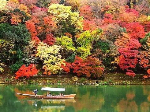 Lịch lá vàng lá đỏ mùa thu ở Hàn Quốc và Nhật Bản