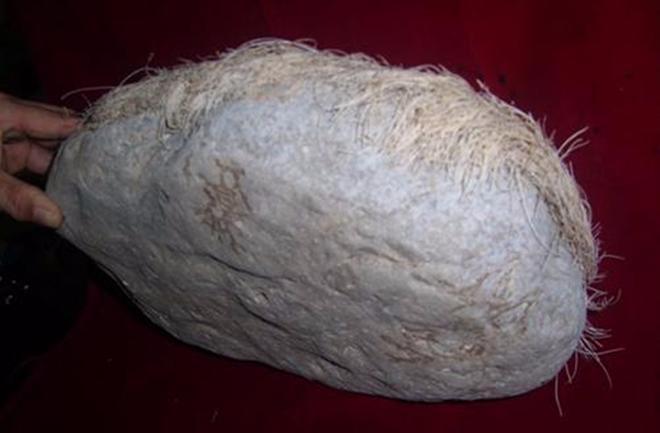 Mang cục đá mọc tóc trắng kỳ dị về nhà, người đàn ông giật mình khi phát hiện ra sự thật-5