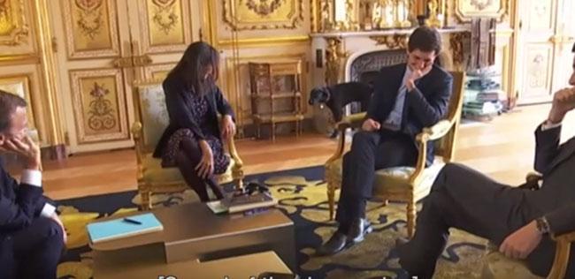 Chó cưng của Tổng thống Pháp đứng tè giữa cuộc họp cấp cao-1