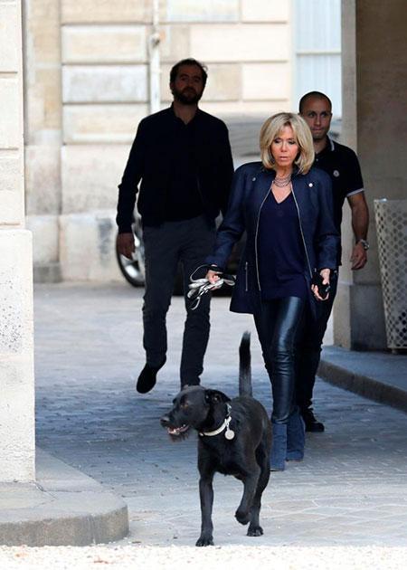 Chó cưng của Tổng thống Pháp đứng tè giữa cuộc họp cấp cao-3
