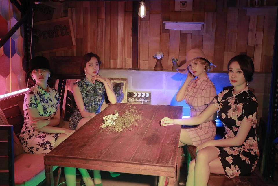 2NE1 sẽ xuất hiện trong concert của T-Ara tại Việt Nam?-4