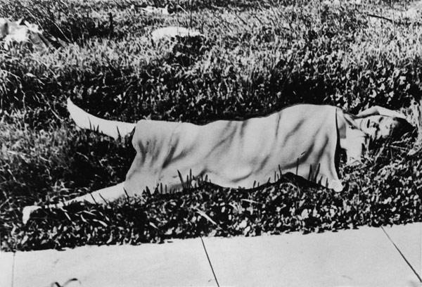 Vụ án nữ diễn viên bị sát hại rùng rợn, 70 năm vẫn chưa biết hung thủ-2