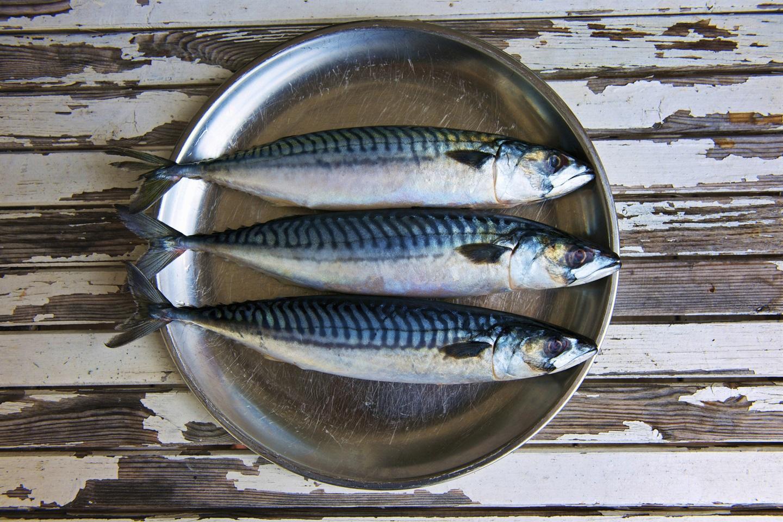 Đây là 5 lý do các chuyên gia dinh dưỡng khuyên chúng ta nên ăn cá mỗi tuần-2