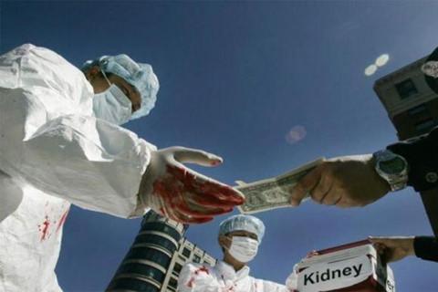 Chấn động một tổ chức phi lợi nhuận kinh doanh thi thể người-1