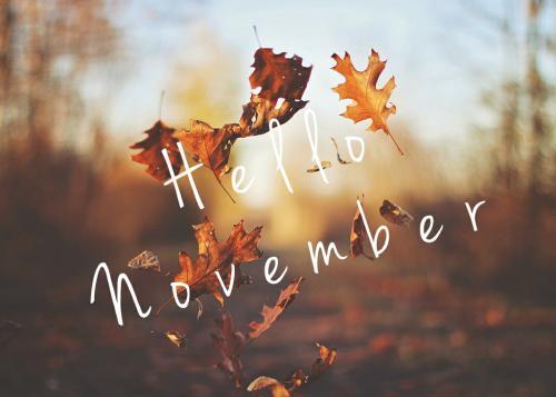Dự báo tháng 11 đầy sắc màu cho 12 con giáp-1