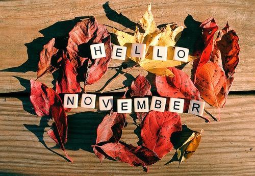 Dự báo tháng 11 đầy sắc màu cho 12 con giáp-3