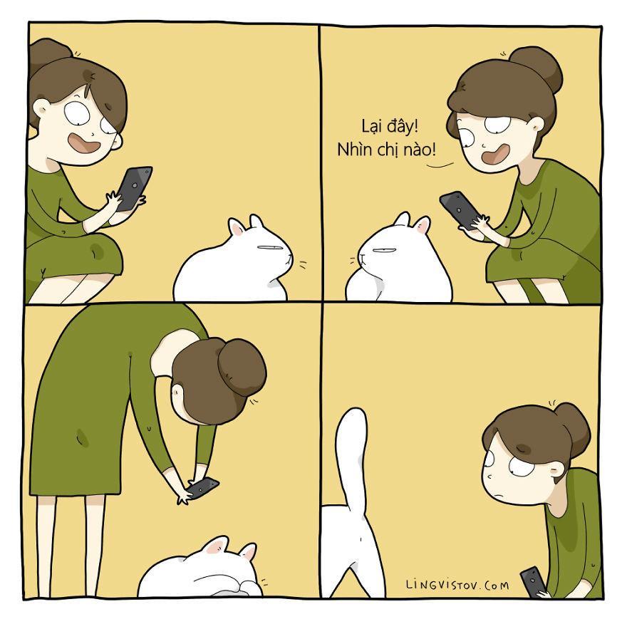 Lý do người yêu không có nhưng mèo nhất định phải nuôi một con!-3