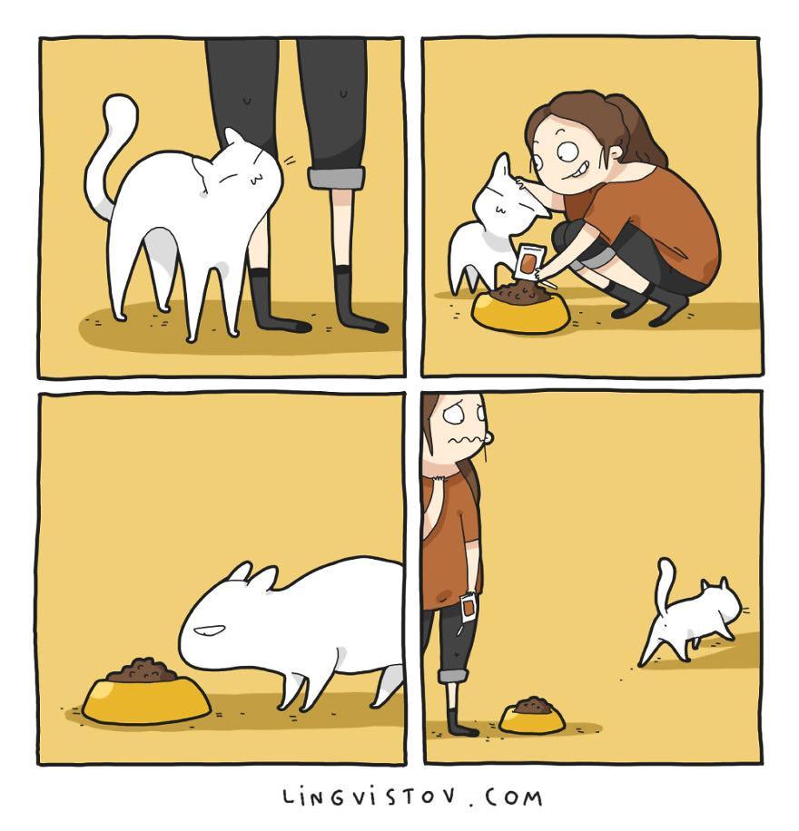 Lý do người yêu không có nhưng mèo nhất định phải nuôi một con!-5