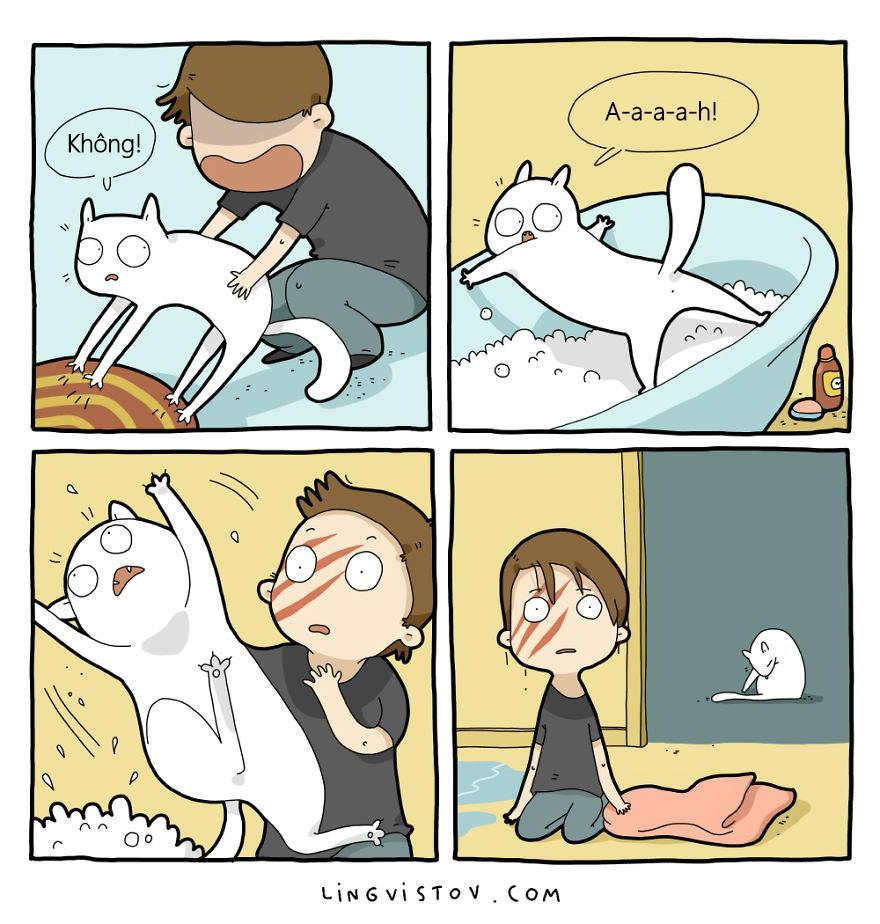 Lý do người yêu không có nhưng mèo nhất định phải nuôi một con!-8