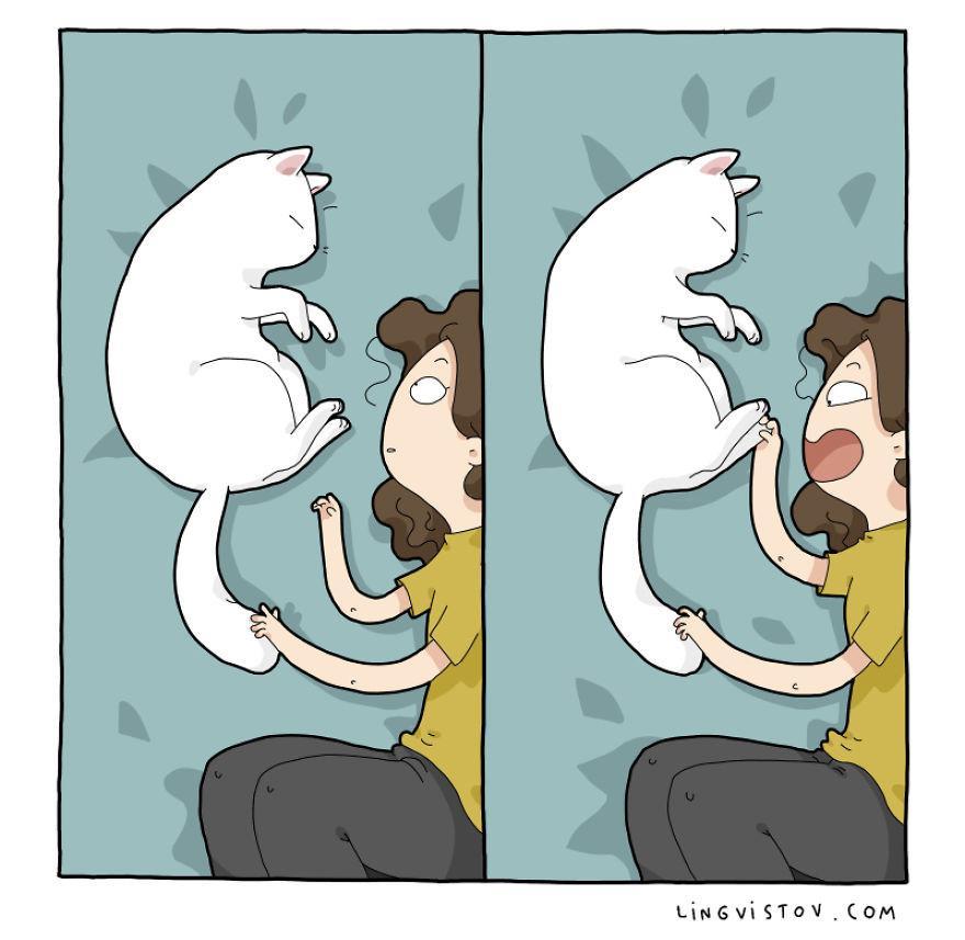 Lý do người yêu không có nhưng mèo nhất định phải nuôi một con!-10