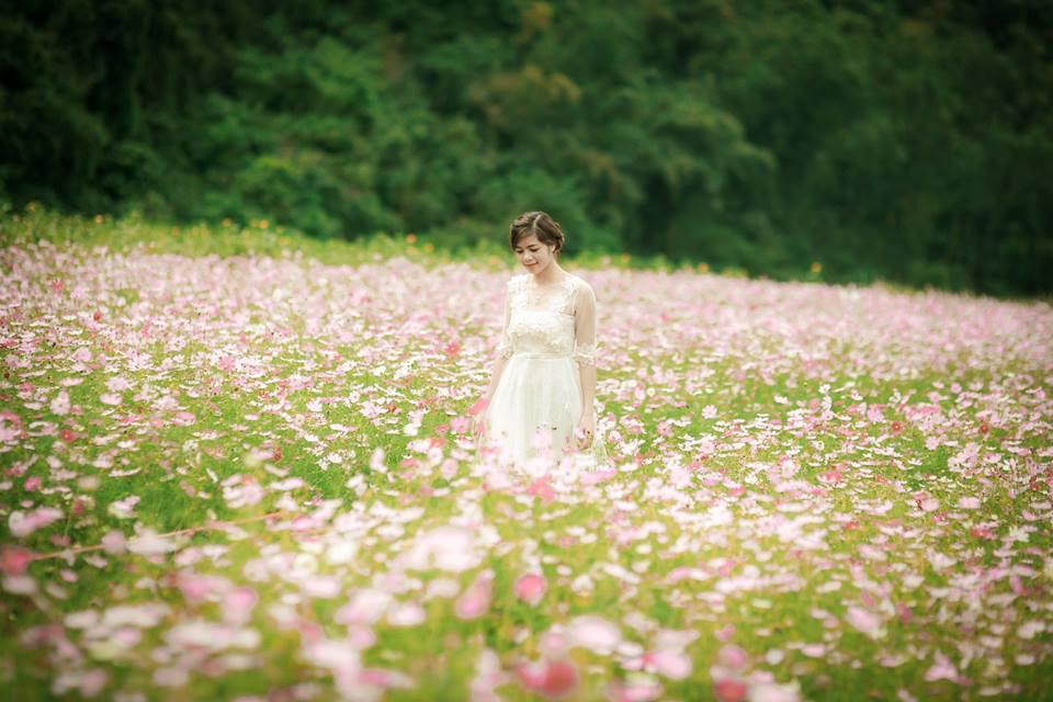Lịm tim giữa thung lũng hoa Bắc Sơn bồng bềnh ở xứ Lạng-2
