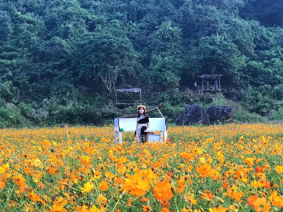 Lịm tim giữa thung lũng hoa Bắc Sơn bồng bềnh ở xứ Lạng-5